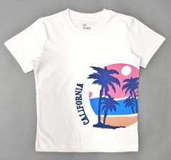 ALL BASICS Boys T-Shirt  (WHITE ) (2 to 8 Years)