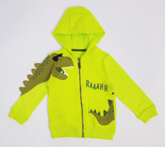 Boys Sweatshirt (LIGHT GREEN) (3 to 10 Years)