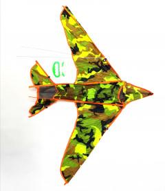 Designer Aeroplane Kite